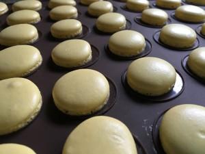 Macarons gelb nach dem Backen