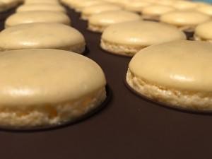 Macarons gelb