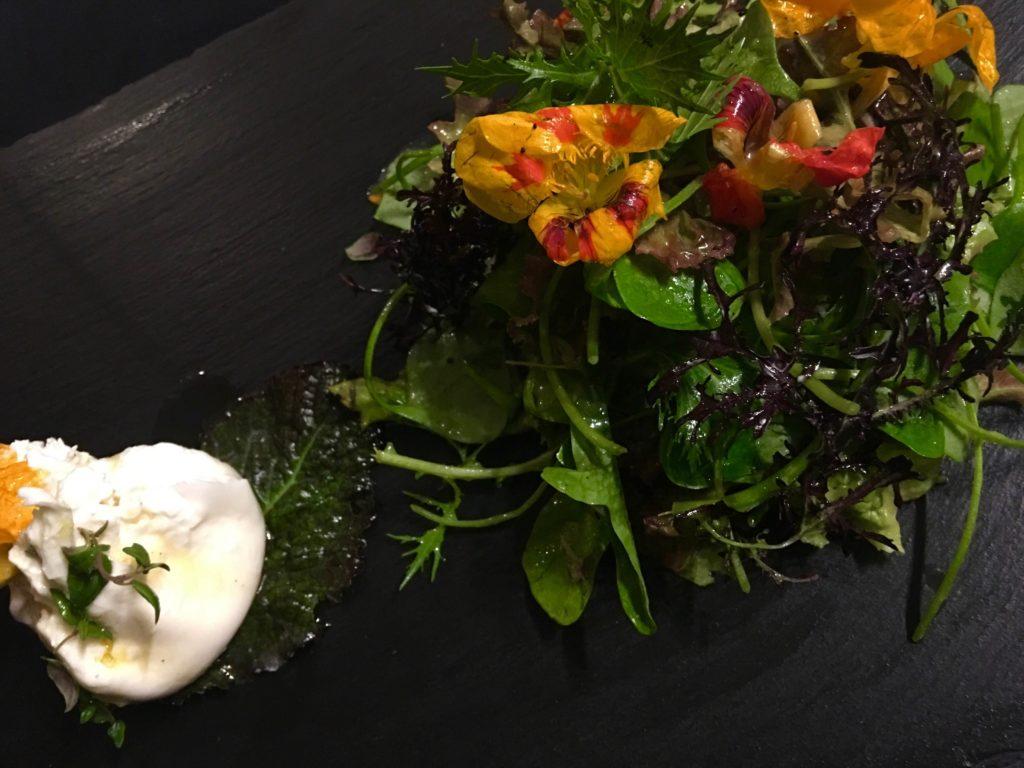 Portulak Salat mit Blüten und Burrata an Orangendressing